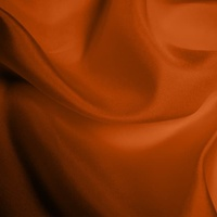 Silk Habotai Light - Burnt Orange