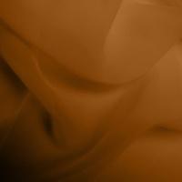 Silk Georgette - Orange Rust